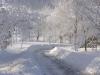 zima_w_mszanie_13