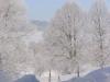zima_w_mszanie_15