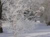 zima_w_mszanie_36
