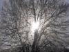 zima_w_mszanie_37